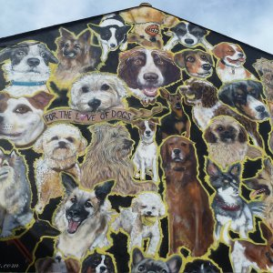 Graffiti for the love of dogs Brighton Angleterre